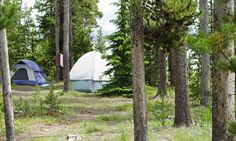 Camping in Yellowstone Park can be quite an adventure. See this article for camp ground ideas, locations and amenities. Yellowstone Campgrounds, Yellowstone Vacation, Yellowstone Camping, National Park Lodges, Yellowstone National Park, National Parks, Luxury Camping, Lake Tahoe, Outdoor Fun