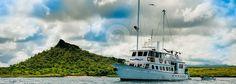 Golondrina Galapagos Yacht (Basic Cruise)