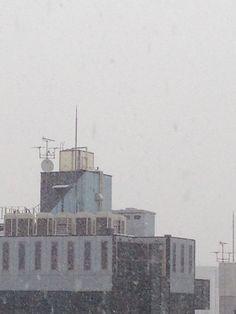 20140214 雪