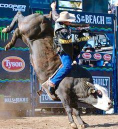 Mick E. Mouse. One of the best PBR bulls ever! Besides Buschwacker of course!                                                                                                                                                                                 More