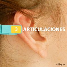 Clothespin Ear Reflexology: Amazingly, Putting A Clothespin On Your Ear Can Relief Pain Ear Pressure Points, Ear Reflexology, Stomach Problems, How To Relieve Stress, Health Remedies, Pain Relief, Health And Beauty, Health Tips, Alternative Health