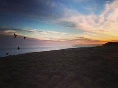 """What a sunset over the white cliffs of Dover  almost our wild camping spot for the night...before we discovered the teenage motorbike and meth hang out just around the corner. 122km today and we've taken the advice of a local copper and stayed in a hotel to avoid the """"unsavouries round 'ere"""" #homesweetbike #biketour #dover #sunset #birds #view #wildcamping #england #adventure #picoftheday #explore #everythinghurts #cycling #bike #travel by wearerunners_uk"""