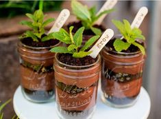 """Eat dirt!!! YUM! 1. wooden """"plant marker"""" spoons or popsicle sticks marked """"Grow"""" 2. mint sprigs 3. gummy worms 4. adding mint extract at the end"""