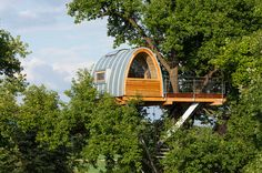 Curving Stair Accesses Treehouse Halle By Baumraum In Germany