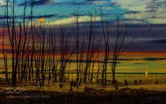 Sunset by giuseppepeppoloni #Landscapes #Landscapephotography #Nature #Travel #photography #pictureoftheday #photooftheday #photooftheweek #trending #trendingnow #picoftheday #picoftheweek