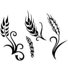 Wheat and rye vector art