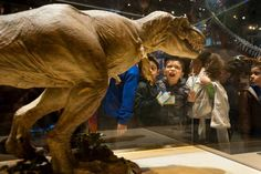 """""""Attendance at Dallas Perot Museum soars 4 months after opening"""" via dallasnews.com"""