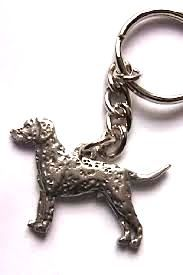 Dalmatian keyring made from finest pewter. Authentication stamp of U.S manufacturer on reverse. Available in UK - price includes VAT & UK postage.