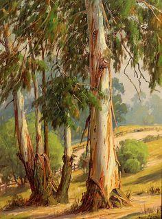 "Paul Grimm ""Eucalyptus in Griffith Park"" 16x12 Oil on Board"
