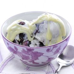 Swirled Blueberry Frozen Yogurt