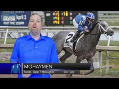 2016 Kentucky Derby Contender - Mohaymen - YouTube