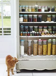 Love the upcycling here of an old wardrobe into kitchen storage shelves.