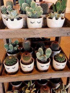 25 unique Jar Garden design ideas and decorations – Cactus arrangements Cool Succulents, Planting Succulents, Planting Flowers, Decoration Cactus, Decoration Plante, Decorations, Cactus Flower, Flower Pots, Flower Bookey
