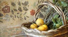 Mystical Tuscany RetreatJune 2-9, 2014 - Home