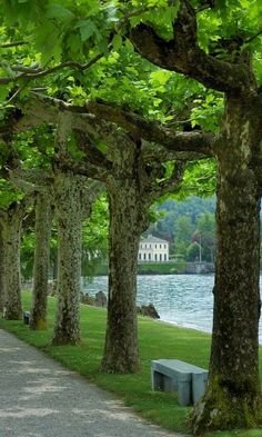 Villa Melzi, Bellagio, Lake Como, province of Como, Lombardy region Italy Places Around The World, Oh The Places You'll Go, Places To Travel, Places To Visit, Around The Worlds, Comer See, Lake Como Italy, Voyager Loin, Beau Site