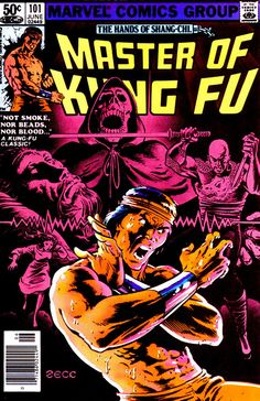 comicbookcovers:    Master Of Kung Fu #101, June 1981, cover by Mike Zeck