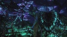 http://vignette2.wikia.nocookie.net/jamescameronsavatar/images/8/81/Bioluminescent_beauty3.jpg/revision/20100426171532