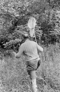 Extremely Silly Photos of Extremely Serious Writers  Vladimir Nabokov hunting down butterflies in Ithaca, New York in 1958. Photo by Carl Mydans, from the Life Photo Archive