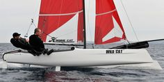 Hobie Wild Cat, raced a Really fun and fast. Picture Day, Catamaran, Rafting, Surfing, Waves, Sailboats, Yachts, Favorite Things, Architecture