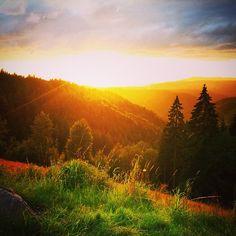 Sonnenuntergang im Schwarzwald #schwarzwald #skyporn