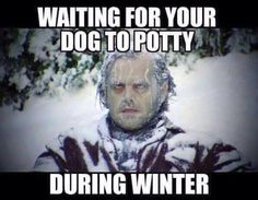 Waiting for your dog to potty during winter