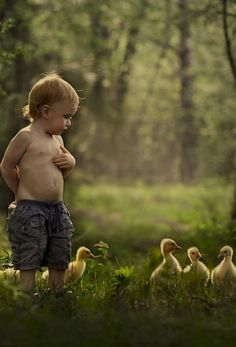 A boy and his ducks