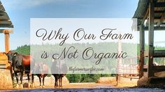 Why Our Farm is Not