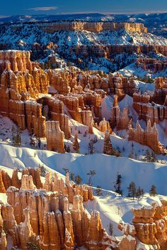 ✯ Bryce Canyon in Winter- Bryce Canyon National Park, Utah Wonderful Places, Great Places, Places To Go, Beautiful Places, Bryce Canyon, Canyon Utah, Grand Canyon, Winter Wonder, Best Photographers