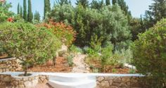 garden in the Traditional villa for 8 in North Zakynthos, Greece, near The Peligoni Club with a pool