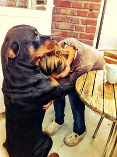 Whoever said that diamonds are a girl's best friend, never had a dog.