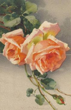 What beautiful colors used in this grouping of roses by Ms. Klein....