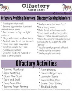 olfactory cheat sheet