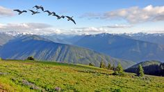 Outside Magazine's Active Honeymoon Destinations: Olympic Peninsula