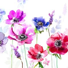 Harrison Ripley - ANEMONES Floral  Layered