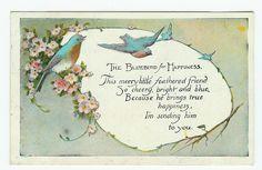 bluebird of happiness poem | Bluebird of Happiness — Happiness of Bluebirds | Postcardinesss ...