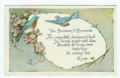 The bluebird for happiness!