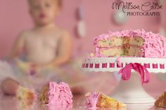 Melissa Calise Photography (1st Birthday First Cake Smash Girl Pink Photoshoot Ideas)