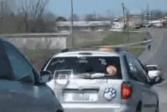 funny-gif-car-basketball-wiper