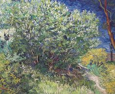 Vincent van Gogh - Lilacs, 1889 (The State Hermitage Museum St. Petersburg Russia) Van Gogh: Up Close at Philadelphia Museum of Art Vincent Van Gogh, Claude Monet, Canvas Wall Art, Oil On Canvas, Wall Mural, Canvas Size, Van Gogh Arte, Van Gogh Pinturas, Lilac Bushes