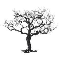 Noahs træ