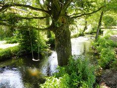 Randonnée de l'Hyrôme et ses anciens moulins / Maine-et-Loire
