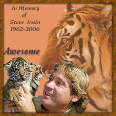 Steve Irwin was a man of wisdom that found joy and happiness in his work. The compassion he showed to animals is what lead me to become who I am today. We as humans are responsible for making sure we stand up and fight for those that can't do it themselves.