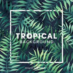 Lovely tropical background with flat design Free Vector Design Plat, Flat Design, Cover Design, Invitation Layout, Tropical Background, Urban Nature, Vector Free Download, Advertising Poster, Tropical Plants
