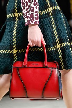 Miu Miu Fall 2015 Ready-to-Wear - Details - Gallery - Style.com