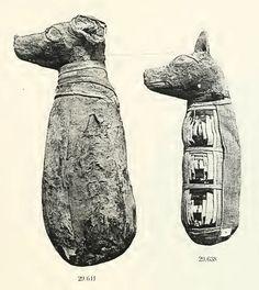 Mumified dogs