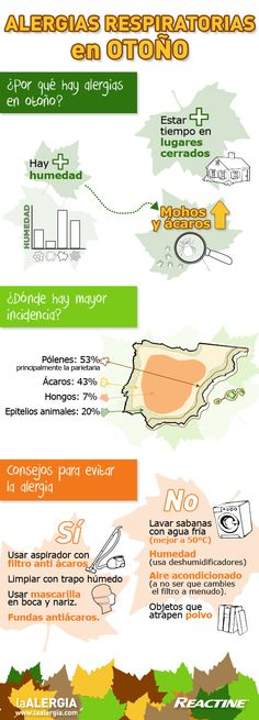 Infografía alergias respiratorias en otoño: http://www.laalergia.com/tipos-alergia/respiratorias/