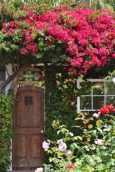 Lovely garden entry | photo by Tricia Buchanan-Benson