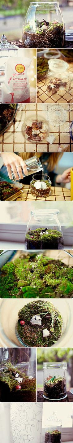 this summer i plan on making a table that will have a fairy garden plus terrariums on it. i already have the mini mushrooms!