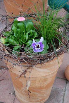 Frühlingsdeko rund um die Haustür - Seite 1 - Deko & Kreatives - Mein schöner Garten online