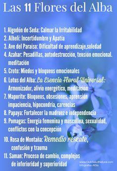 Esencias de Flores del Alba Damas Aureas Aplicaciones